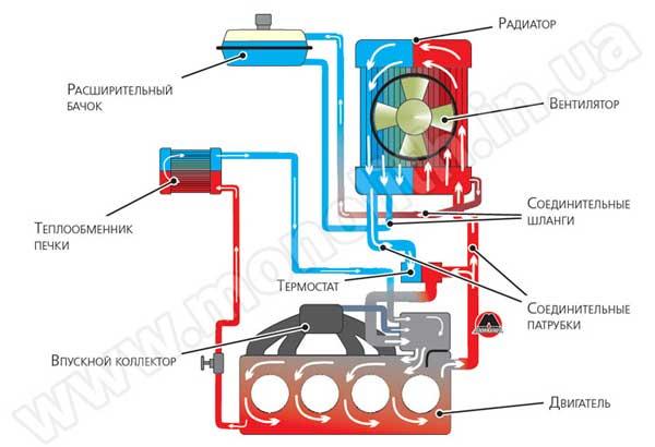 Составляющие охлаждающей системы авто