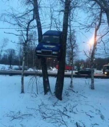 Автомобиль висит между деревьями