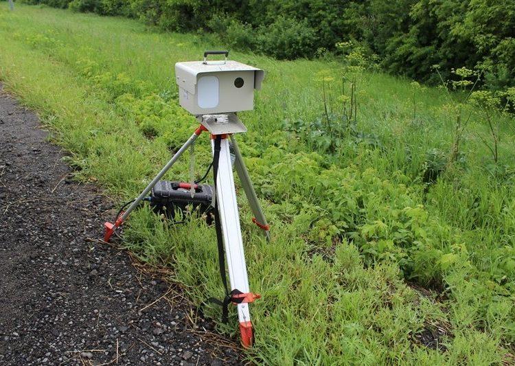 Камера видеофиксации на траве