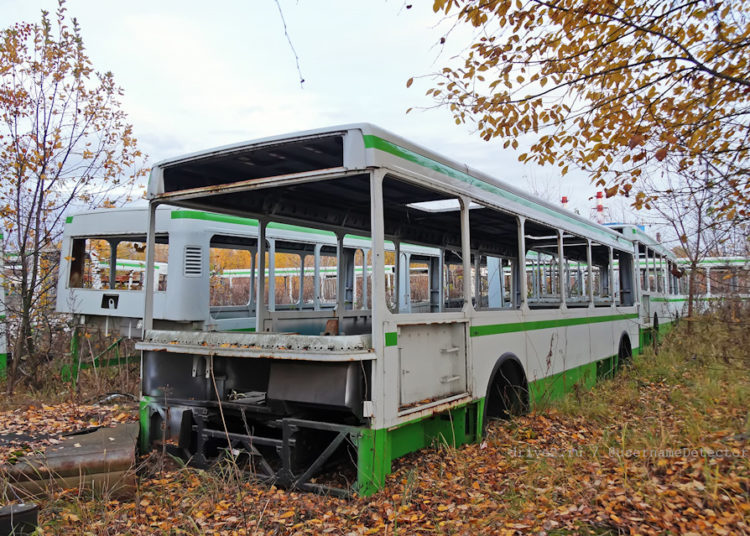 Кузов автобуса среди деревьев