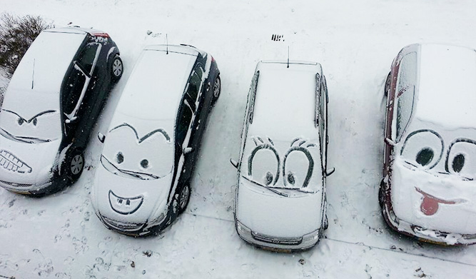 Мордочки на заснеженных машинах