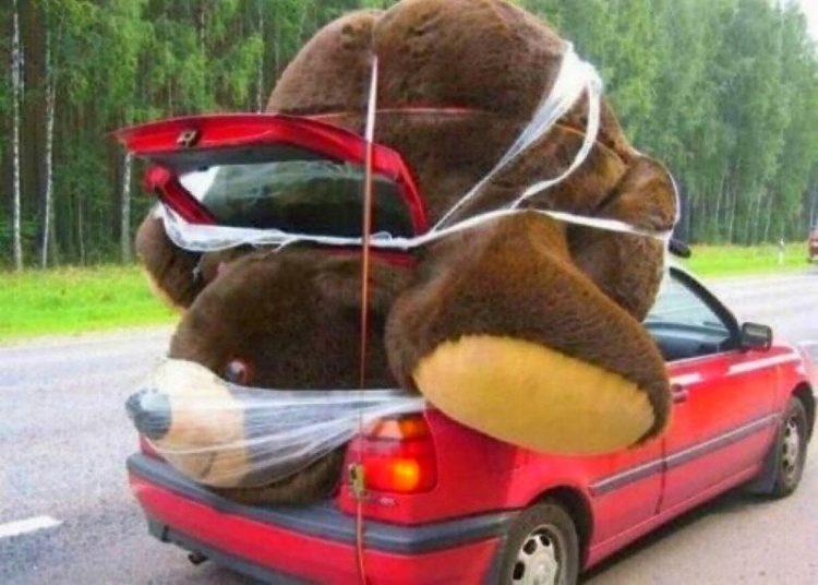 Огромный плюшевый медведь в авто