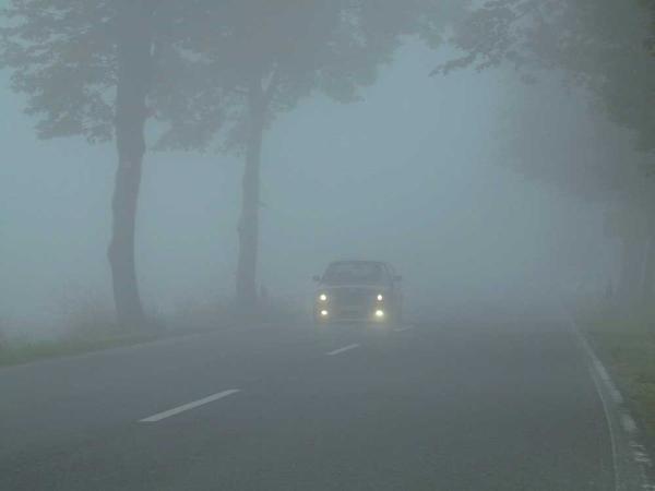 Авто с включенными фарами в тумане