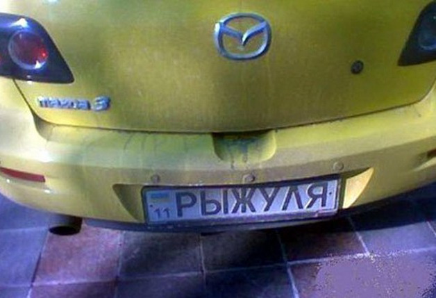 Номер на авто Рыжуля