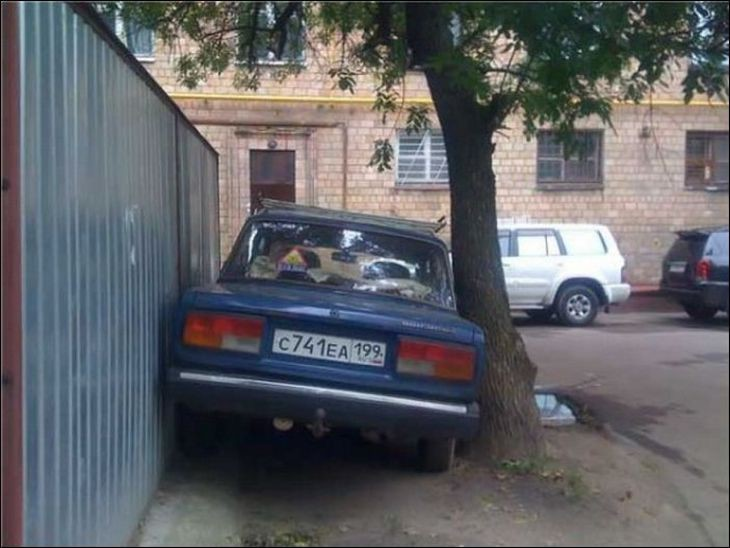Машина между деревом и забором
