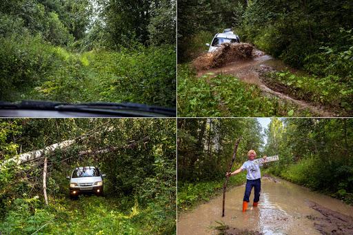 Машина и человек на лесной дороге