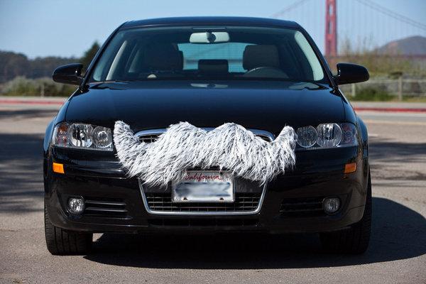 Авто с усами на бампере