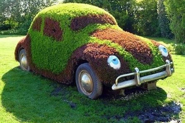 Клумба на автомобиле