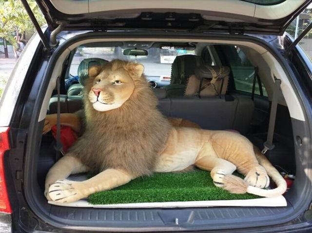 Игрушечный лев в багажнике авто