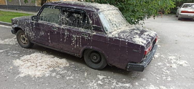 Машина обсыпана перьями