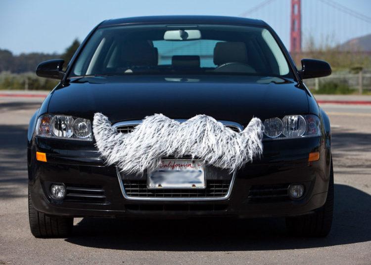 Усы на бампере авто