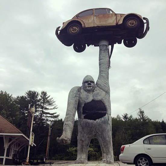 Горилла держит автомобиль в Вермонте
