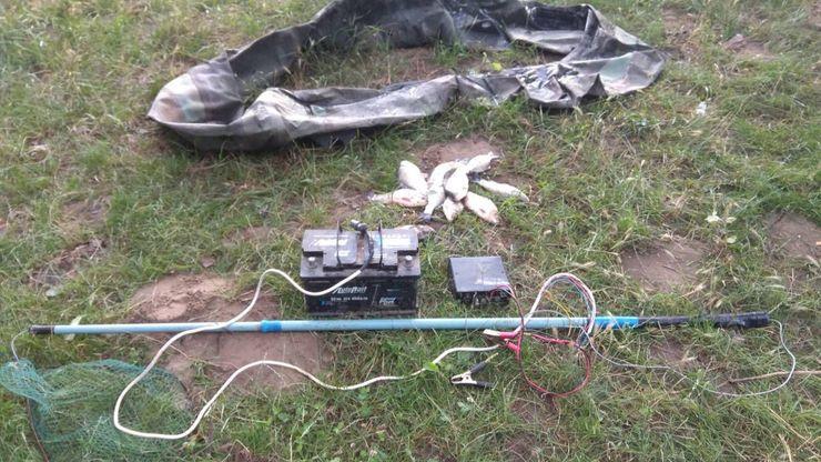 Электроудочка на траве