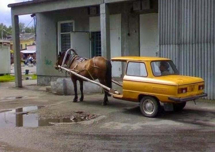 Лошадь с повозкой из Запорожца