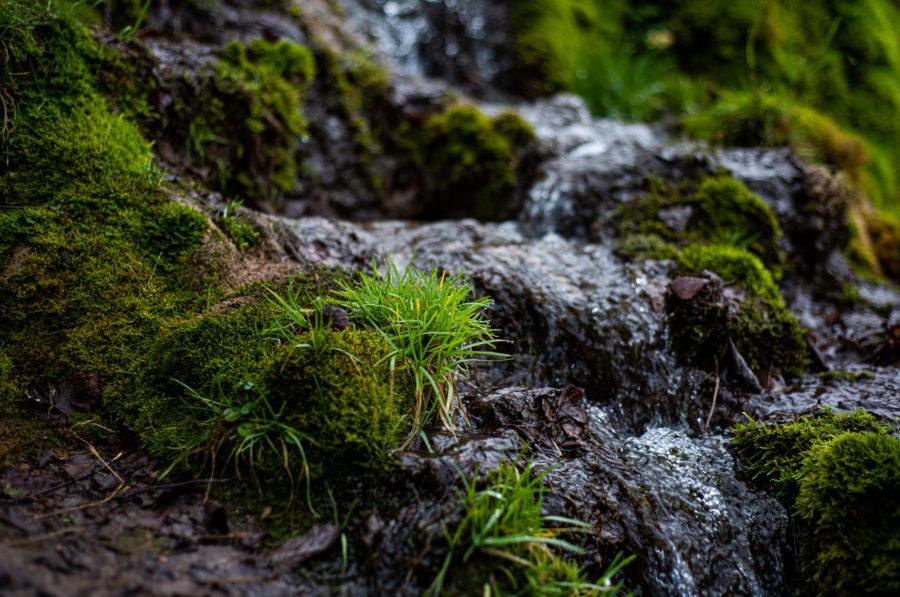 Долина семи ручьев