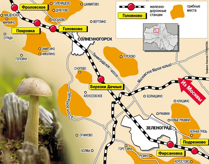 Маршрут за грибами из Москвы