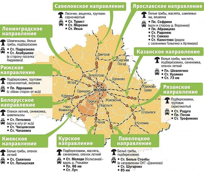 Карта грибных мест в Подмосковье