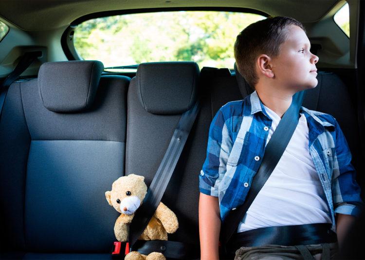 Мальчик и игрушка-медведь с ремнями безопасности